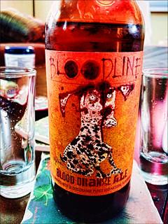 Blood Orange Ale