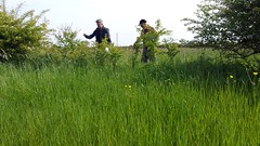 Long Forest - Commonwood, Holt - Year 2 Hedge Survey - 18-5-18 (26) (Keep Wales Tidy) Tags: end year 1 site assessment iselecting hedgerows for 2