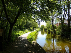 The Worst Place To Live. (Alan.Rust) Tags: canal water caldoncanal reflection building path towpath tree grass bush landscape outdoor 118picturesin2018 69 juxtaposition 2018 panasonic dcfz82 2oef ©copyrightalandlrust2018 explored