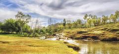 Spring is coming (AQAS.Clicks) Tags: landscape pakistan nature photography ngc travelpakistan beautifulpakisan travel canon perspective moments natureshots naturephotography naturelovers scenery aqas samahni ajk kashmir