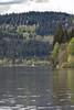 K3II-140517-011 (Steve Chasey Photography) Tags: blackforrest germany pentaxk3ii titisee smcpentaxda60250mm