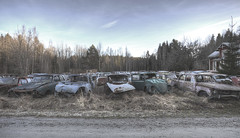 #B50 (Timster1973 - thanks for the 15 million views!) Tags: varmland bastnas sweden swedish car graveyard cargraveyard color colour cars vehicles lost explore exploration urbanexplore urbex ue tim knifton timster1973 timknifton derelict decay urban urbanexploration eurotour canon europe europeanurbex urbandecay abandoned abandon abandonment forgot forgotten forgottenplaces neglect neglected decaying decayed dereliction urbanwandering exploring old still silent left leftbehind vintage abandonedplaces abandonedspaces beauty beautiful transport transportation carmargeddon rust rusting rusty rusted ruins ruin carcemetary external exterior outdoor outdoors field row line stack