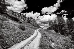 Following the path (Mario Ottaviani Photography) Tags: sony sonyalpha paesaggio landscape travel adventure nature scenic exploration view vista breathtaking tranquil tranquility serene serenity calm marioottaviani viaggio avventura natura esplorazione switzerland svizzera swiss montagna mountain black white blackandwhite monochrome biancoenero infrared infrarosso path sentiero clouds nuvole