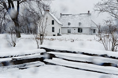 Mabee Farm House (fotofish64) Tags: house oldhouse history historical historichouse farmhouse mabeehouse ancient mohawkvalley schenectadycounty rotterdam rotterdamjunction dutchamerica dutcharchitecture colonialamerica white snow snowfall snowstorm beauty rural weather inclementweather woodenfence fence rustic perspective roof kmount k70 pentax pentaxart hdpentaxda1685mmlens building architecture