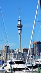 Westhaven Marina, Auckland, New Zealand (Sandy Austin) Tags: panasoniclumixdmcfz70 sandyaustin auckland westhaven marina northisland newzealand pacificocean skytower waitemataharbour