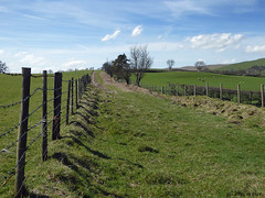 Glyndwr's Way 008 (Row 17) Tags: wales powys nationaltrail path footpath rural fields fence lumix panasonic