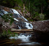 Slipping trees (lynamPics) Tags: 24105l 5dmkii birthdayckfalls leefilters longexposure paluma waterfall
