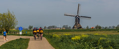 Dutch landscape (Marco van Beek) Tags: holland europe beautiful world nikon d5000 afs dx nikkor 18200mm f3556g ed vr ii dutch landscape nature bikers dog people flowers windmill grass tree