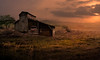 Stay With Me (henryhintermeister) Tags: yellow barns minnesota oldbarns clouds farming countryliving country sunsets storms sunrises pastures nostalgia skies outdoors seasons field hay silos dairybarns building architecture outdoor winter serene grass landscape plant southdakota
