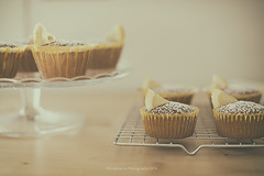 Lemon cupcakes (Graella) Tags: cupcakes magdalenes magdalenas lemon limon amarillo yellow stilllife bodegon sweet dessert postre merienda breakfast food homemade