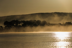 Steamy !! (A Costigan) Tags: fog foggy mist misty canon80d sunrise morning water resevoir wicklow ireland irish waterscape outdoor nature