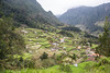 Terraces (Ged Slaughter Photography) Tags: terrace terraced terraces gedslaughter madeira landscape