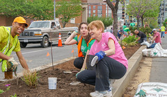 2018.05.06 Vermont Avenue, NW Garden - Work Party, Washington, DC USA 01804