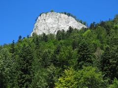 Pieniny (Bogdan J.S.) Tags: europa europe polska poland góry mountains pieniny krajobraz landscape natura nature przyroda las forest drzewa trees niebo sky mountain góra