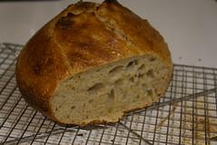 DSC05599 (RosieTulips) Tags: sourdough wholewheat bread