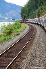 Rocky Mountaineer enroute Kamloops to Revelstroke, Lake Louise & Banff, Passing a Canadian Pacific Freight Train, British Columbia, Canada (Black Diamond Images) Tags: kamloops banff kamloopstobanff alberta britishcolumbia rockymountaineer rockymountaineerroute souththompsonriver thompsonrivervalley canadianrockies canadiantourism armstronggroupltd goldleaf goldleafdomecoach train railroad railway travelphotography landscapes mountain mountainside landscape canada lake cp canadianpacificfreighttrain revelstroke lakelouise water forest sky scenictours