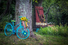 Antiques (donnieking1811) Tags: tennessee cookeville antiques outdoors bicycle door sign trees hdr canon 60d lightroom photomatixpro