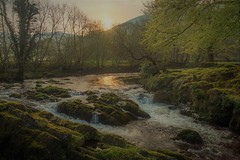 Sunrise by the river (Happy snappy nature) Tags: sunrise river softlight water rocks trees hill nature outdoors wales nikond810 nikon2485vr landscape beautiful