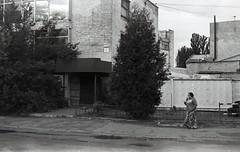 20052018003 (samitrofanov) Tags: svema 25025 film home develop minoltax700