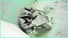 WC... Decay (BarbaraBonanno BNNRRB) Tags: abandonedbuilding abbandonata architettura abandoned abandonedarchitecture colonia coloniaettoremotta costruzione decadimento decay edificio foto green grey interni biancoenero colors marinadimassa massacarrara entrata interno struttura scala ventennio urban architetturafascista aschitettura fascismo httpwwwtotallylosteuspacecoloniaettoremotta barbarabonanno bonannobarbara bnnrrb bybarbarabonanno photo