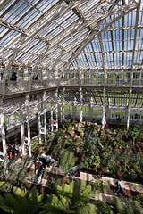 Temperate House (Francis Mansell) Tags: structure glasshouse shadow greenhouse temperatehouse kew kewgardens royalbotanicgardenskew people glass plant treefern column strut girder pane gallery walkway building architecture