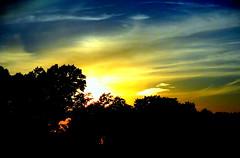New York Sunset (dimaruss34) Tags: newyork brooklyn dmitriyfomenko image sky clouds sunset trees