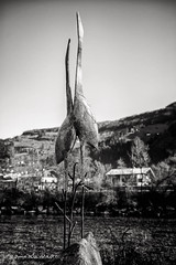 Chant des cigognes (patoche21) Tags: autriche tyrol zillertal artmoderne oiseau statue patrickbouchenard blackandwhite bw art modern austria carving bird cigogne stork sculpture