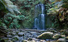 Beauchamp Falls (dichiaras) Tags: australia victoria travel day nature ferns treefern tree water waterfall river wilderness prehistoric