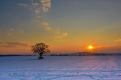 Sunset in Winter (SarahSogn) Tags: winter sunset bavaria germany