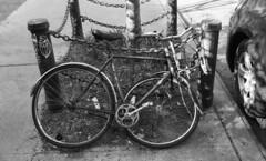 Elizabeth Street (neilsonabeel) Tags: nikonfm2 nikon film analogue blackandwhite bike newyorkcity