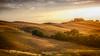 Paysage de Toscane (Gilles Bourdreux Photography) Tags: europe italie toscane