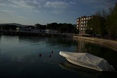 #umbria#italy#trasimeno#lake (michela.felici) Tags: lake italy trasimeno umbria