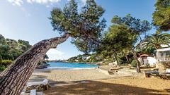 Mallorca20180411-07880 (franky1st) Tags: spanien mallorca palma insel travel spring balearen urlaub reise