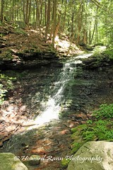 Worlds End SP (18) (Framemaker 2014) Tags: worlds end state park sullivan county forksville pennsylvania endless mountains united states america