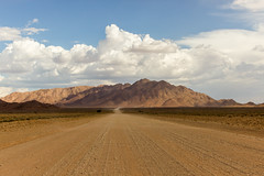 IMG_8305 (tregnier) Tags: namibia roadtrip africa travel desert animals sossusvlei leopard cheetah lion solitaire trip