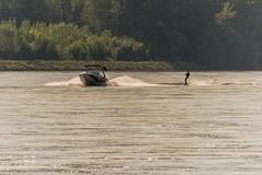 Water ski on the Danube (a7m2) Tags: danube greifenstein loweraustria sport radfahren schifffahrt wandern natur wassersport schiffe schleuse donaustrom