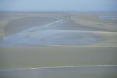 20180503-04633-A7R1 (Harm vb) Tags: normandie normandy sony a7r1 kust coast wad wetland wetlands