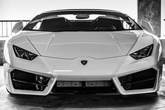Valet Victorian (jijake1977) Tags: car garage lamborghini exotic monochrome luxury money