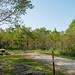 Minneiska Campground - Campsite at Whitewater State Park, Minnesota