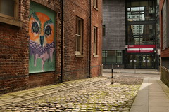 Hidden Owl (Derbyshire Harrier) Tags: sheffield 2018 cobbles streetart owl southyorkshire street urban city froggattlane art