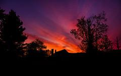 I Woke Up (Nicholas Erwin) Tags: sunrise morning magenta purple colorful silhouette nature landscape trees sky contrast fujifilmxt2 fujixt2 fujifilm xf1855mmf284rlmois xf1855 fujifilm1855 waterbury vermont vt unitedstatesofamerica usa america fav10 fav25 fav50