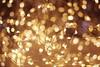 IMGP4050 (maurizio siani) Tags: luce luci napoli naples italia italy pentax k70 35mm aprile primavera luccicare sfocato sfocatura fili lucine natale illuminazione illuminato elettrico universo stella stelle stars universe caldo colore colori sfera sfere intricato connesso connessioni concetto concetti nodo nodi elettrificato illuminare lighting microcosmo fantasia immaginazione immaginare immaginato marzo