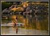 GirlWithDogOnFolsomLake_8639 (bjarne.winkler) Tags: girl her dog board sailing folsom lake this spring ca