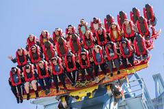Griffon faces (raptoralex) Tags: griffon buschgardenswilliamsburg buschgardens williamsburg virginia rollercoaster amusementpark themepark bolligermabillard bm canon60d canon 70200f28