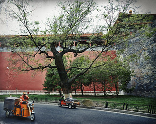 Tree, walls and scooters