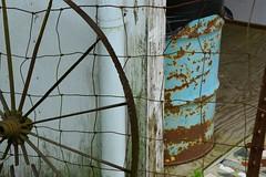 Paradise Garden 114 (Krasivaya Liza) Tags: paradisegarden paradise garden gardens howardfinster howard finster folk art artist junk junkyard kitsch funky fun folksy artistic mosaic summerville ga georgia fence friday
