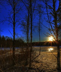 Behind the trees (Roman_P2013) Tags: norge norway best shot trees sun winter sow sky blue landscape
