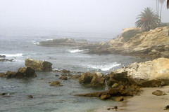 Laguna Beach (Tiger_Jack) Tags: lagunabeach california
