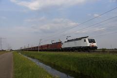 DB Cargo 189 822-0 + 189 036-7  met ertstrein over de Betuweroute bij Angeren richting Maasvlakte 15-05-2018 (marcelwijers) Tags: db cargo 189 8220 0367 met ertstrein over de betuweroute bij angeren richting maasvlakte 15052018 betuwe route lingewaard freight line railway railways eisenbahn guter bahn spoorlijn goederen nederland niederlande netherlands dutch pays bas irion train railroad class br baureihe witte rode serie electrische electrical locomotive locomotief lokomotief 036 822 tren trenes treno