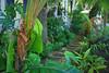 Key West (Florida) Trip 2017 0317Ri 4x6 (edgarandron - Busy!) Tags: florida keys floridakeys keywest house houses